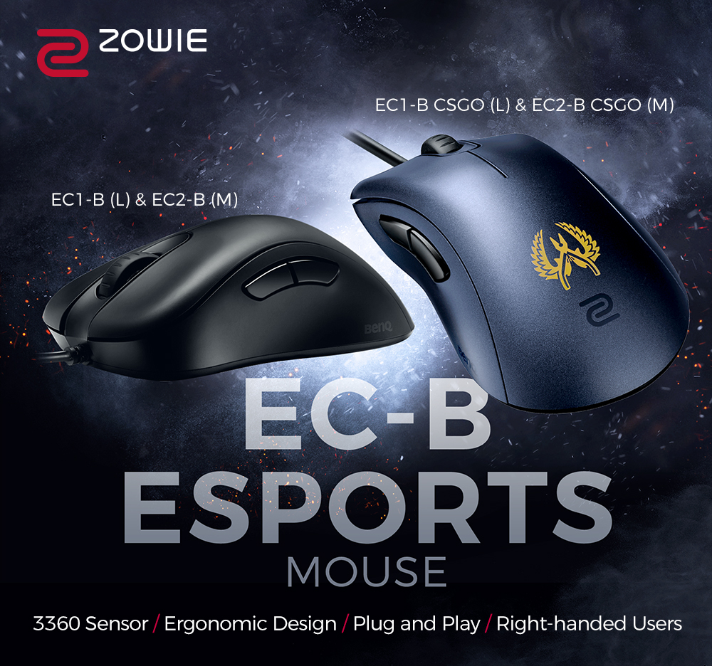 BenQ ZOWIE EC1-B CS:GO Version 3360 Sensor Esports Gaming Mouse (Large)